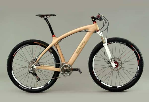 Renovo Badash 29er mountain bike