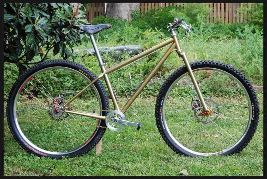 Rigid 29er Mountain Bike