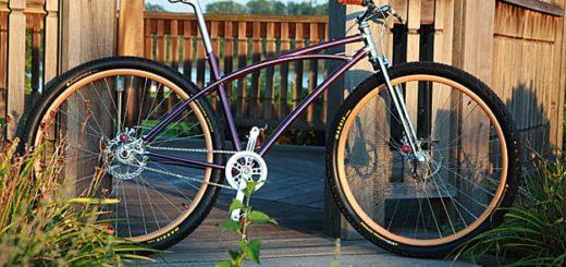 Rich Phillips custom 29er