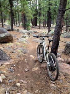 Fort Valley Trail System - Flagstaff, AZ
