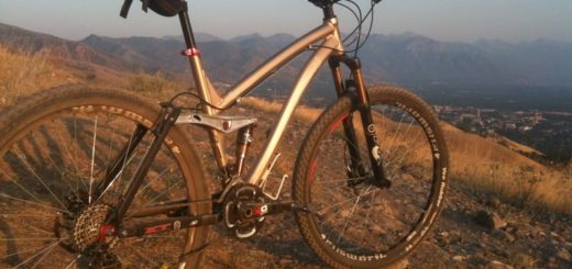 ellsworth-evolution-29-mountain-bike