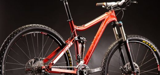 Lenz Sport Mammoth 29er