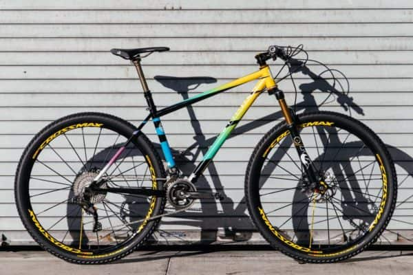 Stinner & Team Dream hardtail